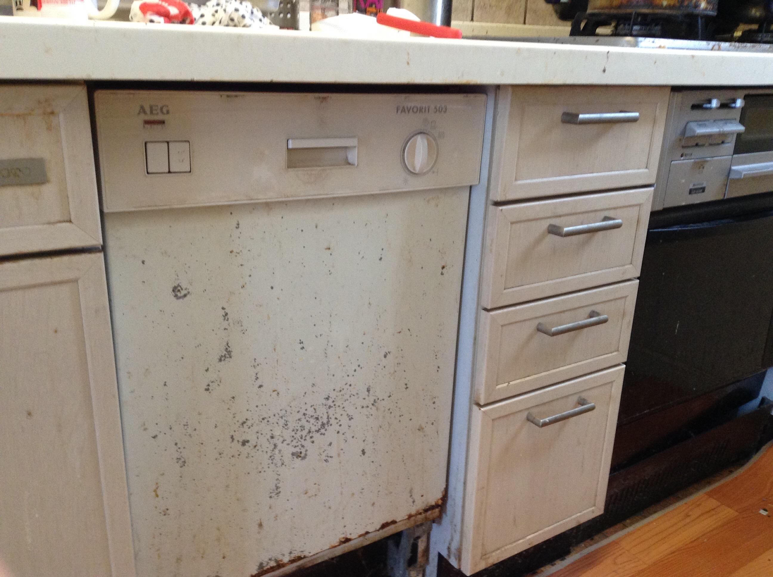AEG91年製食器洗浄機
